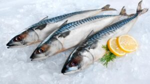 Tuna Fish Vitamin B12 Food