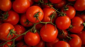 tomato Boost Insulin Production