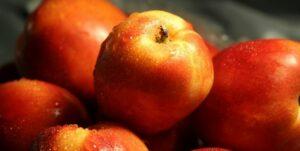 Apples_Health_doctorfolk