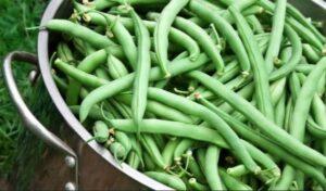 Beans_Vegetable_Food_Health_Article_Doctorfolk