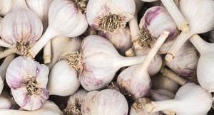 Garlic Foods that Boost Estrogen