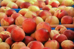 Peaches_Fruit_Health_Article_Doctorfolk