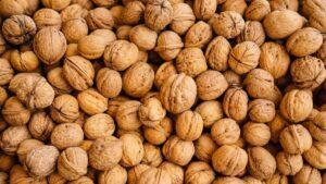 walnuts_Health_Article_Doctorfolk