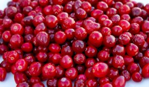 cranberry_fruit_food_health